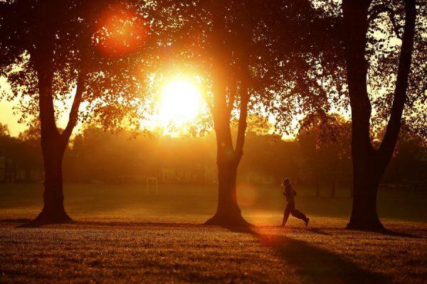 4 lợi ích từ việc chạy bộ buổi sáng