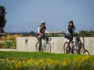 Nằm mơ thấy xe đạp là điềm gì? Đánh lô đề con nào?