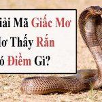 Mơ thấy bị rắn cắn đánh con gì
